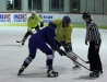 2013_hokej_dl00012