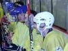 2013_hokej_dl00015