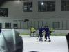 2013_hokej_dl00017
