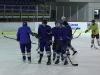 2013_hokej_dl00018