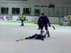 2013_hokej_dl00044