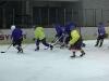 2013_hokej_dl00047